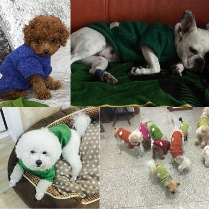 Fashion Cotton Pet Dog Bichon Tacti..